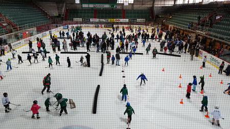 Tlačenica na skalickom ľade počas akcie projektu SZĽH Deti na hokej, foto rp